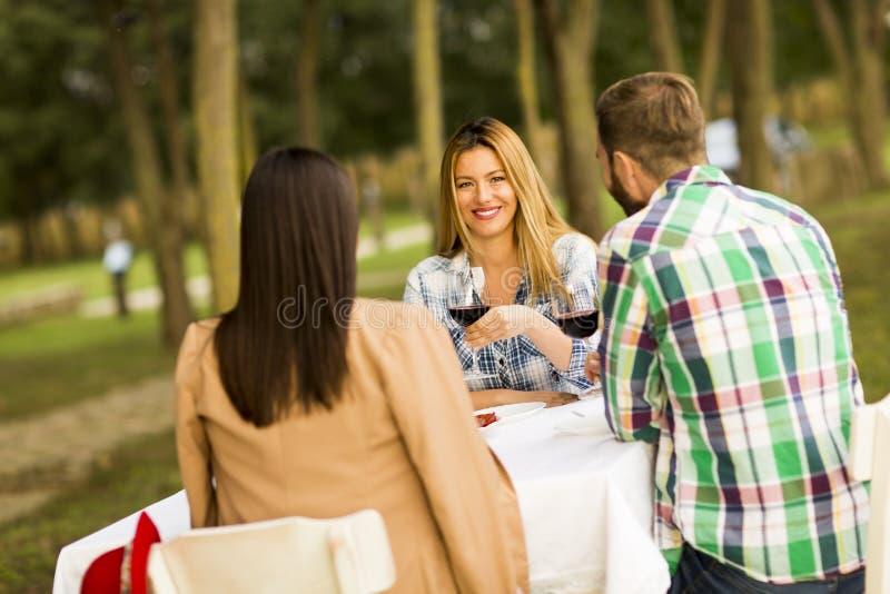 Gość restauracji w winnicy zdjęcie stock