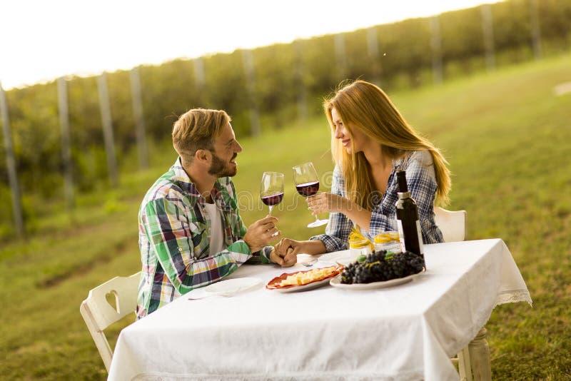 Gość restauracji w winnicy obrazy royalty free
