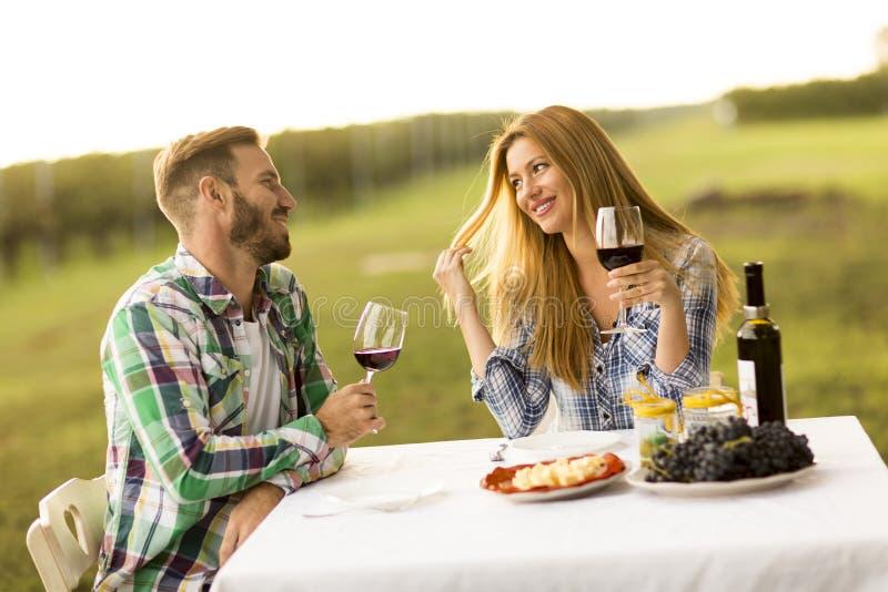 Gość restauracji w winnicy fotografia royalty free