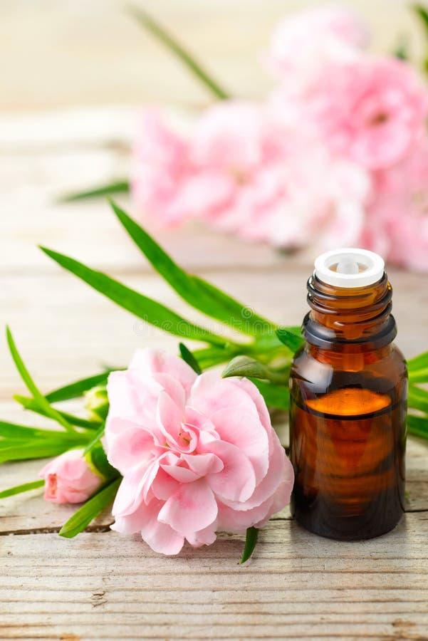 Goździka absolutu istotnego oleju i menchii kwiaty na drewnianym stole zdjęcia royalty free