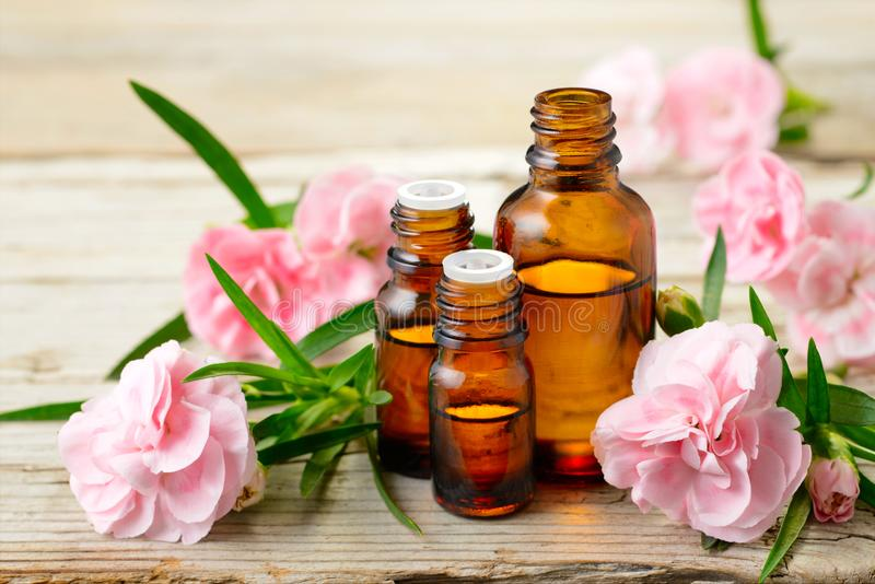 Goździka absolutu istotnego oleju i menchii kwiaty na drewnianym stole obraz royalty free