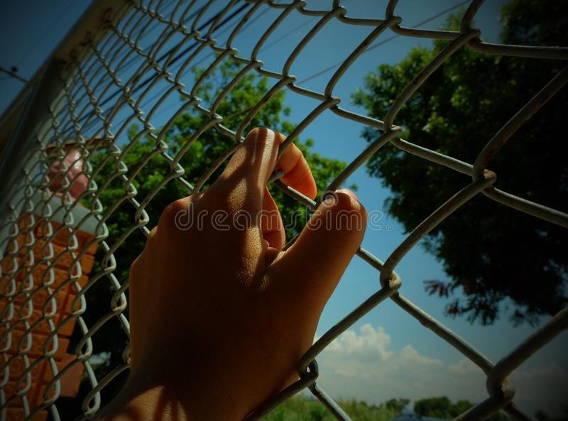 Go out from Cage stock images