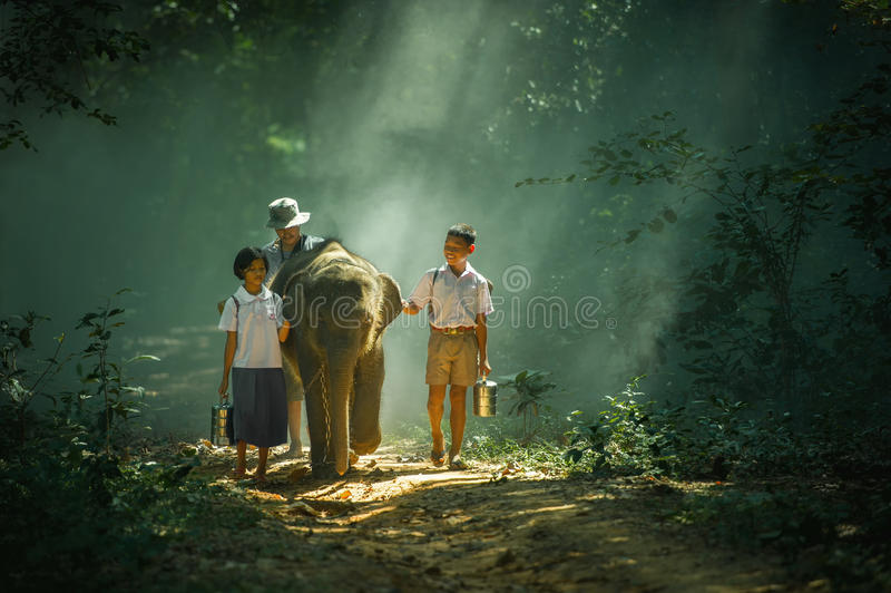 Go to school with elephant stock photos