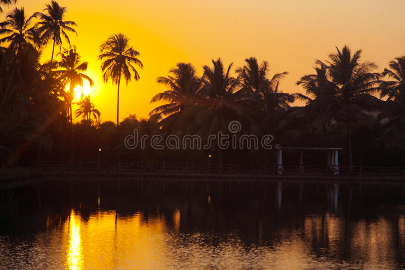 Goa ηλιοβασιλέματος στοκ εικόνες