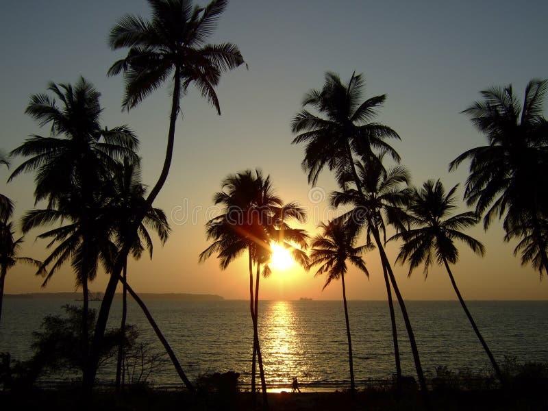 Download Goa photo stock. Image du exotique, création, rêve, porté - 8653370