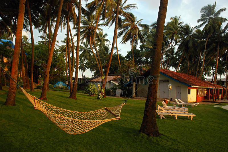 Download Goa Beaches in India editorial stock image. Image of indian - 17928714