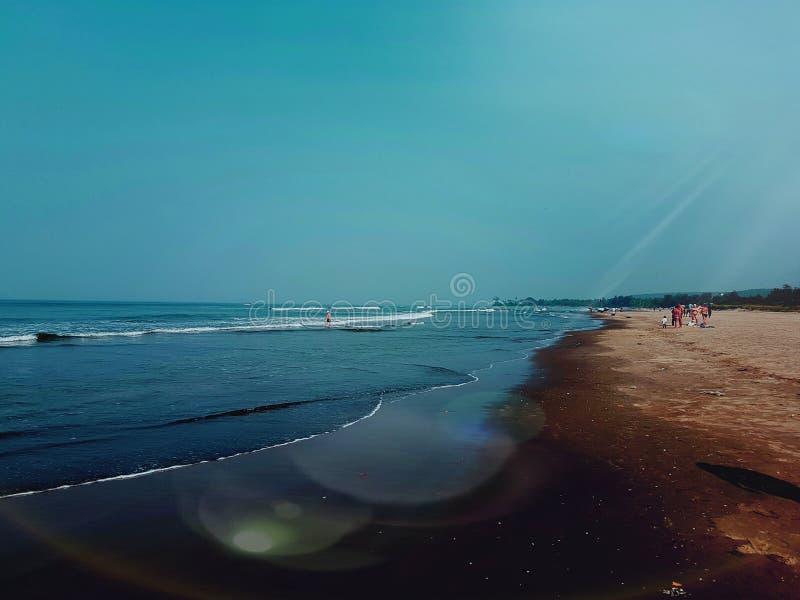 Goa da praia foto de stock
