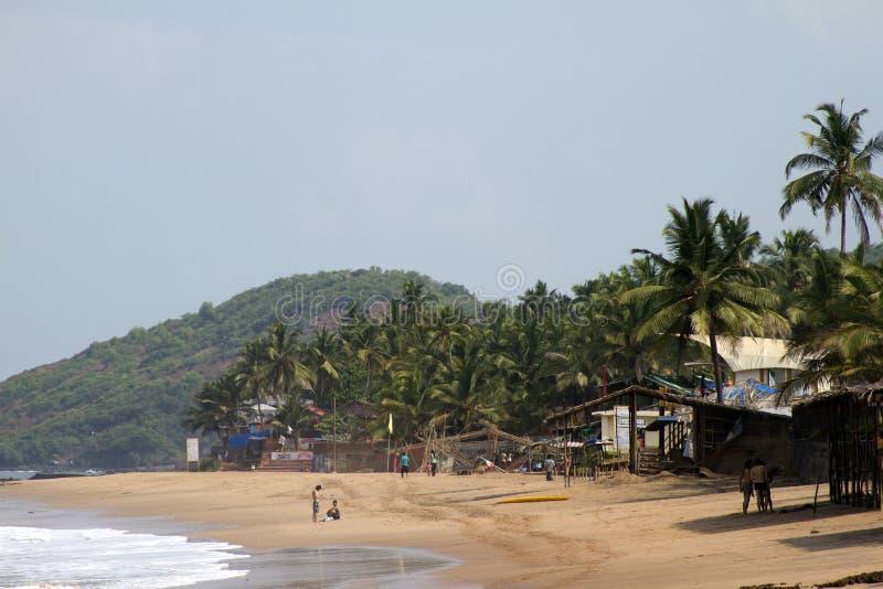 GOA India plaża, piękna z drzewkami palmowymi obraz stock