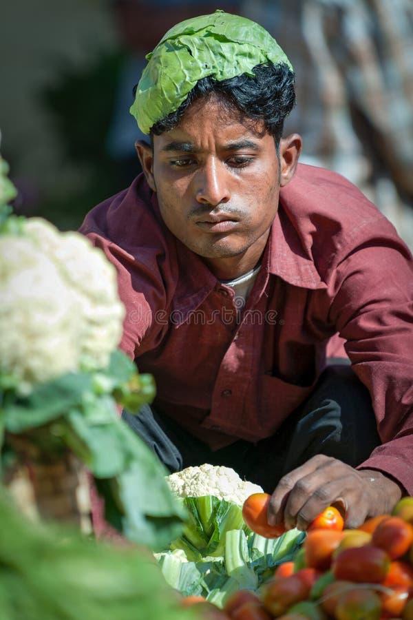 Goa Indien - Februari 2008 - ung man som säljer nya grönsaker på den berömda Mapusa marknaden royaltyfri fotografi
