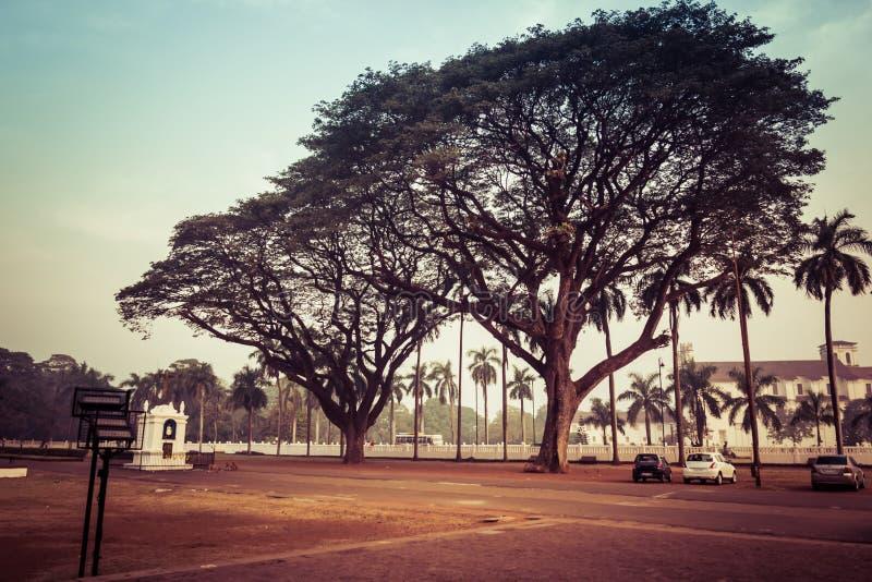 Goa, la India - 20 de diciembre de 2018: La catedral de Santa Catarina Cathedral en Goa viejo imagenes de archivo