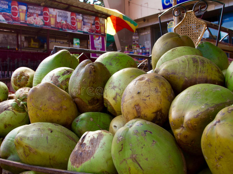 Goa, la India - 16 de diciembre de 2016: Los cocos verdes apilados en un ` s del vendedor del borde de la carretera hacen compras fotos de archivo