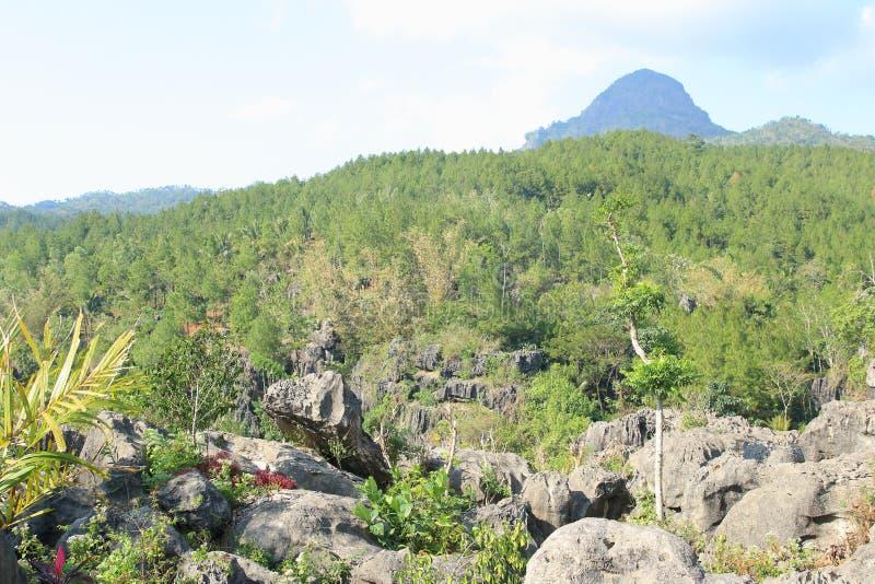 Goa Ngerit, Trenggalek East Java, Indonesien royaltyfria bilder