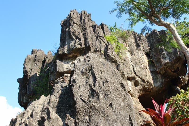 Goa Ngerit, Trenggalek East Java, Indonesien royaltyfria foton