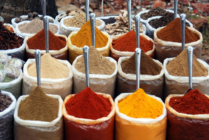 Goa Spices royalty free stock photography