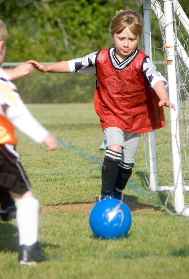 Goalie in Actie royalty-vrije stock afbeeldingen