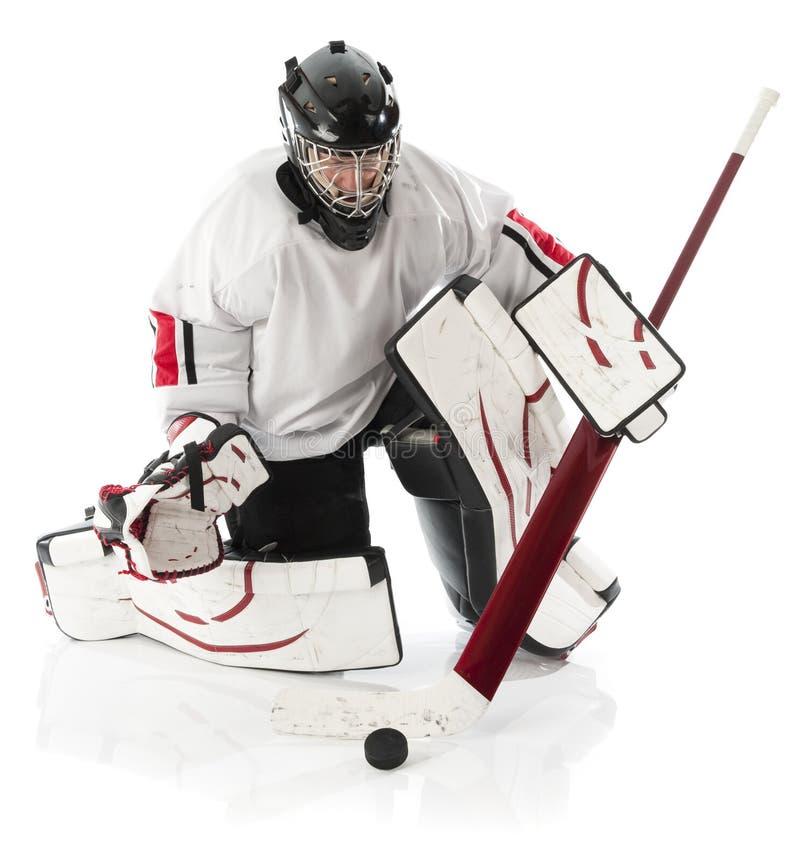 goaliehockeyis fotografering för bildbyråer