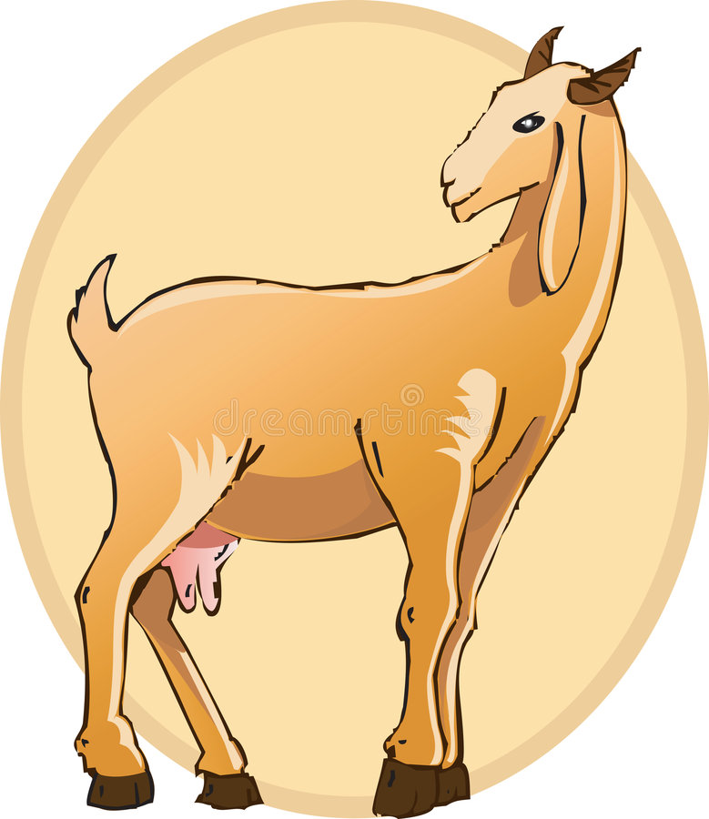 Download Goat stock vector. Illustration of standing, milking, goat - 3296473