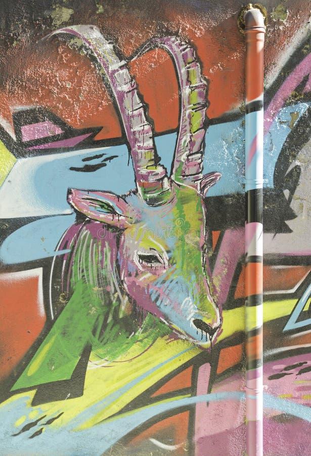 Goat colors. Goat colorful graffiti on urban wall graffiti royalty free stock photography