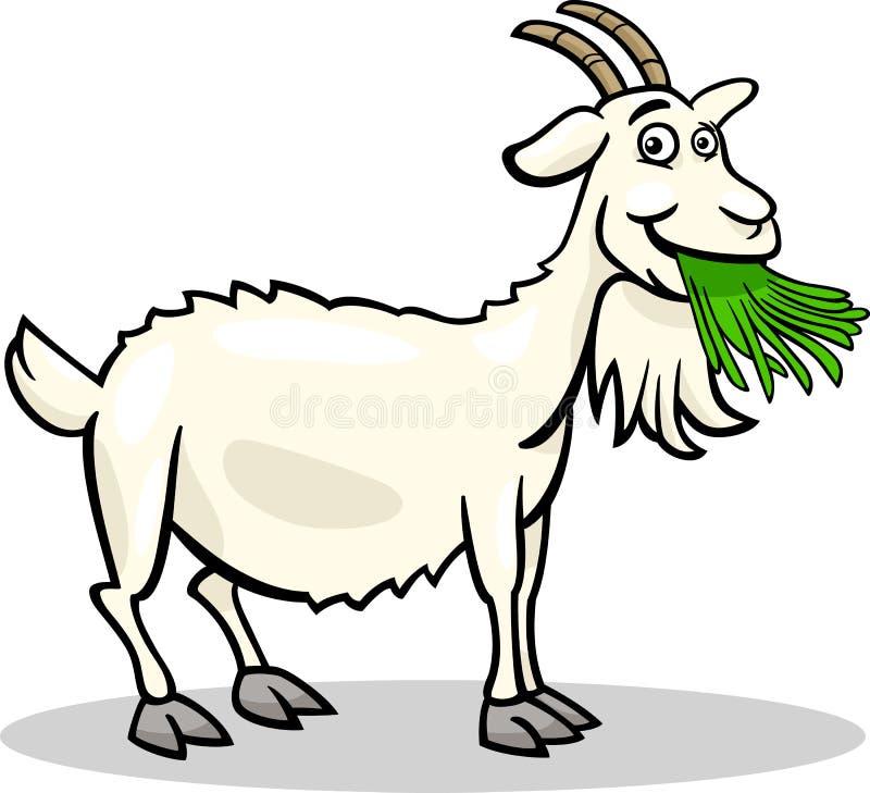 Goat farm animal cartoon illustration stock illustration