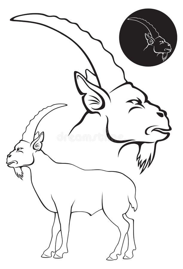 Download Goat Royalty Free Stock Image - Image: 35095956