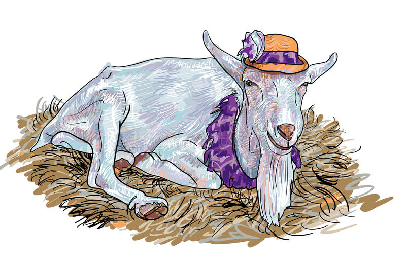 The goat on haystack. The goat that wear hat lay down on haystack royalty free illustration