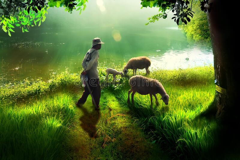 Goat herder by the lake stock photo