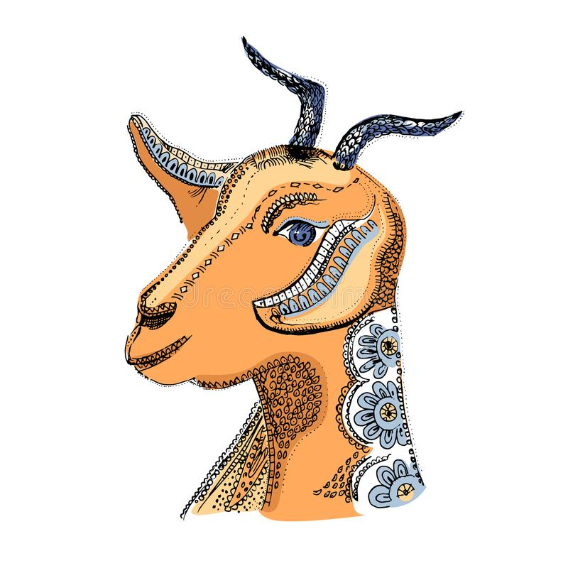 Goat illustration. Vector image of the hand-drawn sketch goat s head. Dairy products, packaging and advertising. Goat illustration. Vector colorful image of the vector illustration