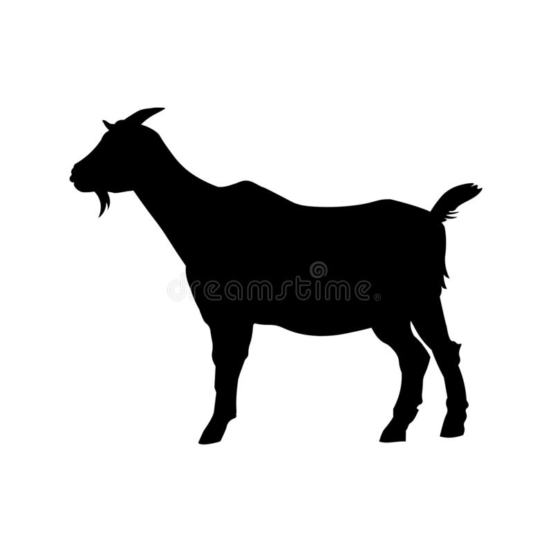 Goat standing silhouette. Goat standing black silhouette side view. Vector illustration isolated on white background stock illustration