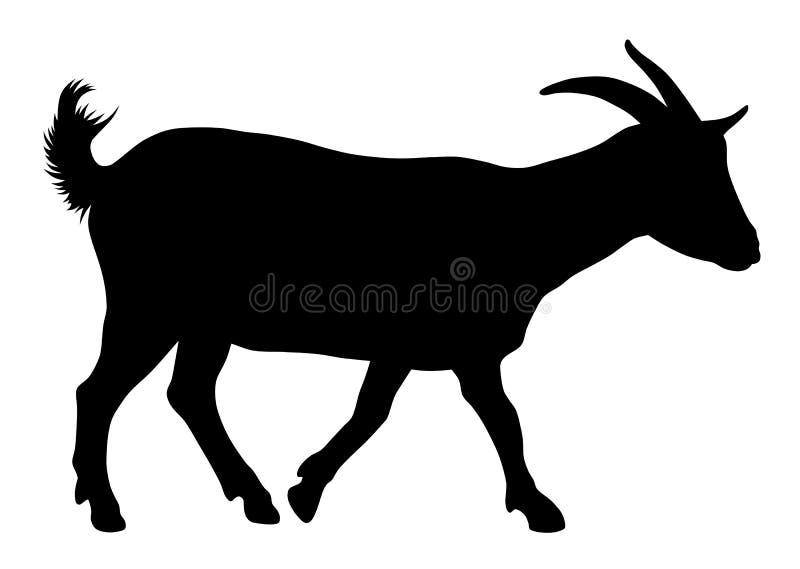 Goat. Vector illustration of goat silhouette stock illustration