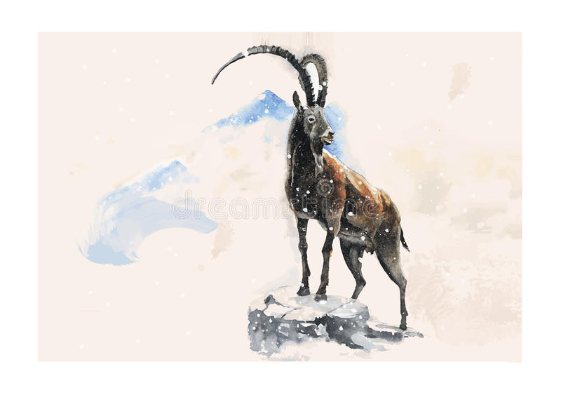 Goat. Vector illustration of the goat in winter made in watercolor technique vector illustration