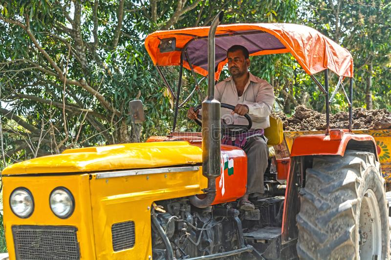 A middle-aged man is driving tractor and carrying soil for construction work royalty free stock image
