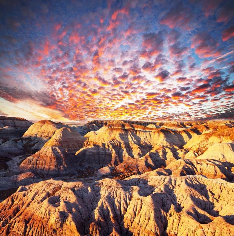 Free Gobi Desert Stock Images - 18555584