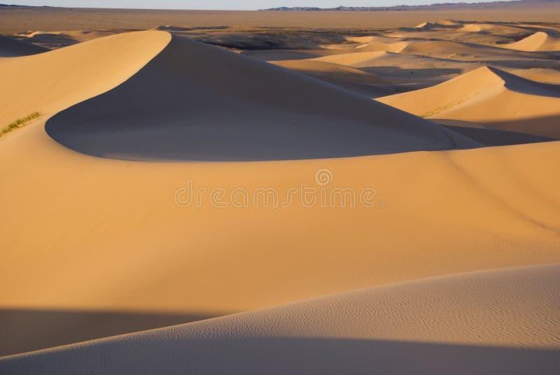 Gobi desert. Sands dunes on gobi desert in Mongolia stock images