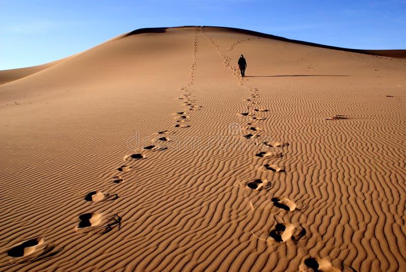 Gobi desert. Sands dunes on gobi desert in Mongolia stock photography