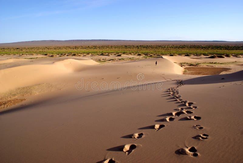 Gobi desert. Sands dunes on gobi desert in Mongolia royalty free stock photo
