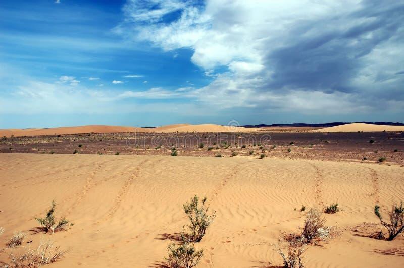 Gobi Desert. Sand Dunes in the Gobi Desert, Mongolia stock photography