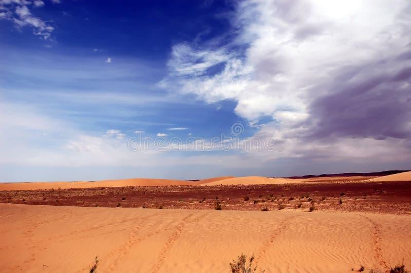 Gobi Desert. Sand Dunes in the Gobi Desert, Mongolia royalty free stock photography