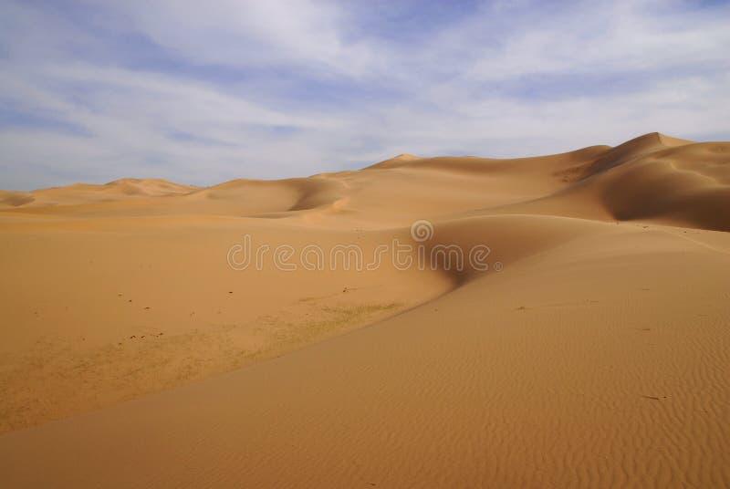 Gobi Desert, Mongolia. Sand dunes in late afternoon springtime sun in the Gobi Desert, Mongolia royalty free stock photography