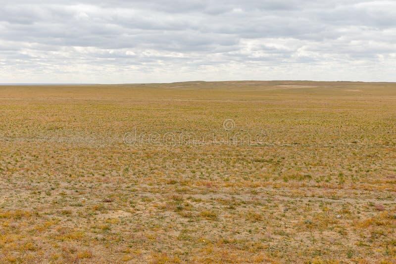 Gobi desert mongolia. Beautiful landscape of the gobi desert, mongolia royalty free stock image