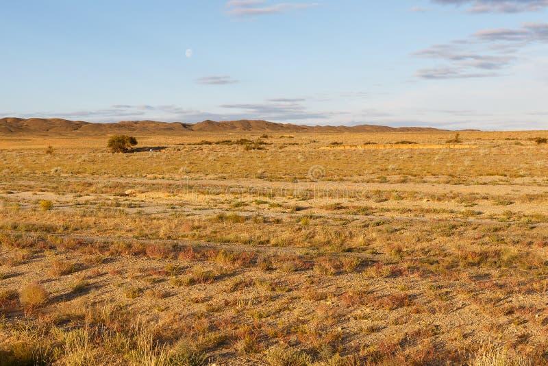 Gobi desert mongolia. Gobi desert, beautiful landscape of the desert, mongolia stock images