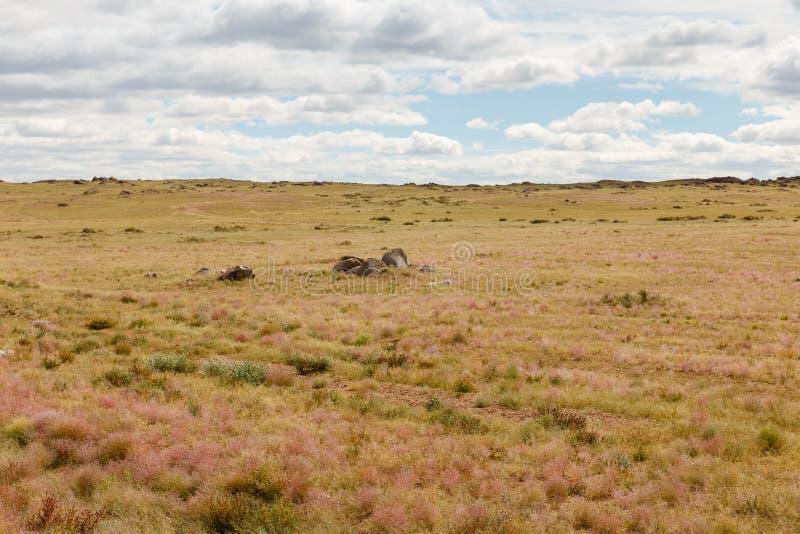 Gobi desert mongolia. Beautiful landscape of the gobi desert against a cloudy sky, mongolia royalty free stock photo
