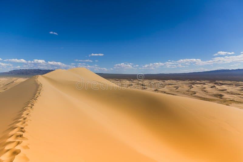 Gobi Desert Singing Sand Dunes. Tracks on the sand of the Gobi Desert royalty free stock photo
