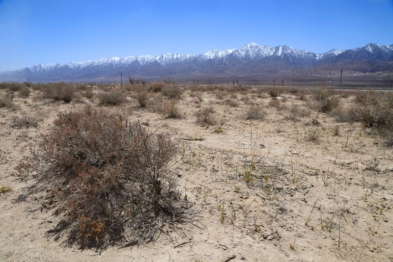 Gobi desert with snow moutains royalty free stock photography