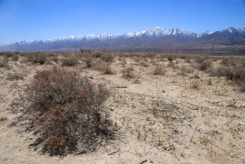 Gobi-Wüste mit Schnee moutains lizenzfreie stockfotografie