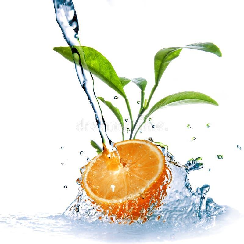 Gocce dell'acqua sull'arancio con i fogli verdi immagini stock libere da diritti