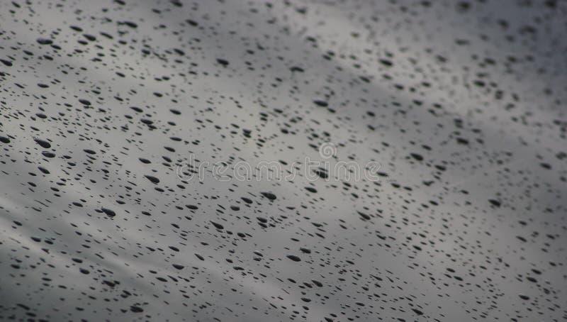 Gocce della pioggia su un vetro immagine stock