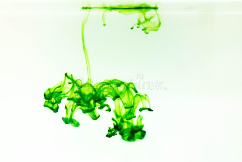 Gocce di colore verde fotografia stock