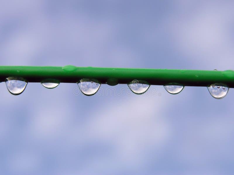 Download Gocce di pioggia fotografia stock. Immagine di goccioline - 206160