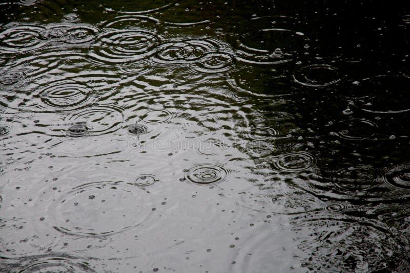 Gocce di pioggia fotografia stock