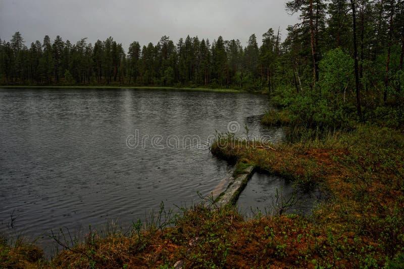 Gocce di pioggia che cadono nell'acqua fotografia stock